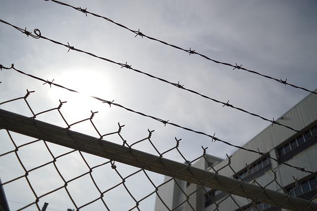 ostnatý drát na plotě.jpg
