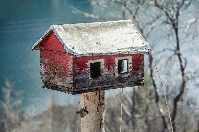 Chraňte ptáčky před zimou